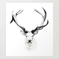 stag Art Prints featuring STAG by A.J.F