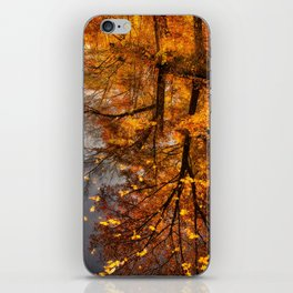 Fall Reflection iPhone Skin