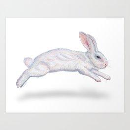 Fluffy White Bunny Art Print
