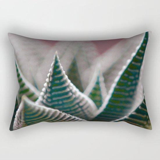 #132 Rectangular Pillow