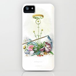 """Vintage immortal antique flowers and crown french """"immortelle"""" botanical print iPhone Case"""