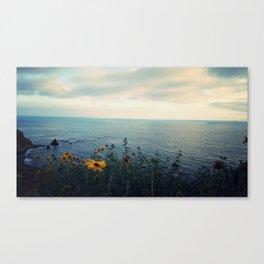 Pelican Cove Canvas Print