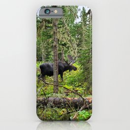 Bruce the Moose in Isle Royale iPhone Case