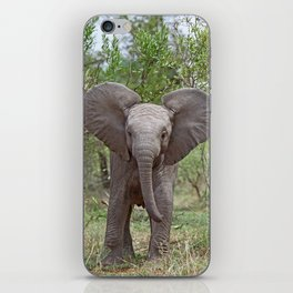 Small Elephant - Africa wildlife iPhone Skin