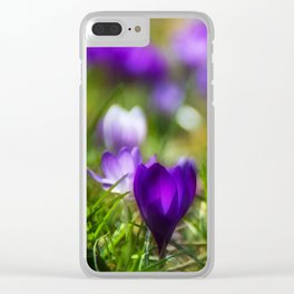 Heralds of spring Clear iPhone Case