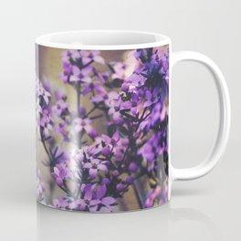 Wild Boronia Coffee Mug