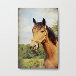 My Kentucky Buddy Metal Print