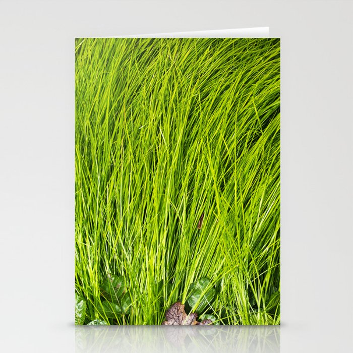 Verdure Stationery Cards
