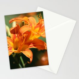 Day Lily Dance Stationery Cards