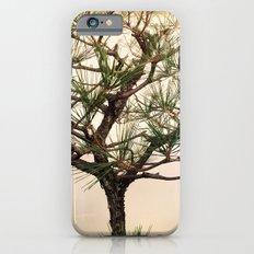 Pointer Slim Case iPhone 6s