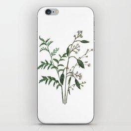 Plant Watercolor iPhone Skin