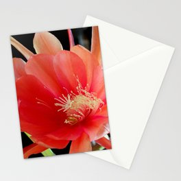 In The Jungle, The Mighty Jungle Stationery Cards