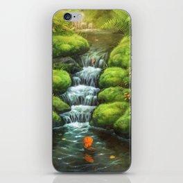 Little Stream iPhone Skin