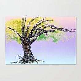 sketch_tree, Auckland Canvas Print