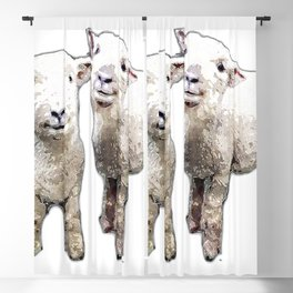 Two sheep bywhacky Blackout Curtain
