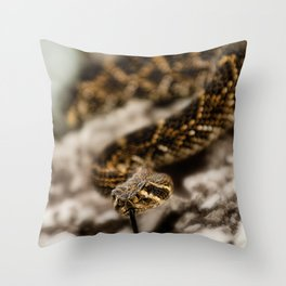 Rattlesnake-III Throw Pillow