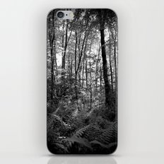 The Complexity of Nature iPhone & iPod Skin
