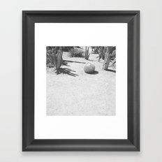Cacti - in Black & White Framed Art Print