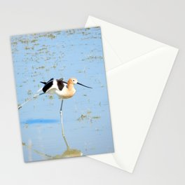 American Avocet Acrobatics Stationery Cards