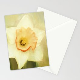 Spring Daffodil Stationery Cards