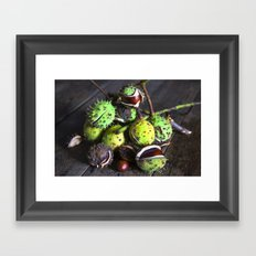 Autumnal Still Life with Chestnuts Framed Art Print