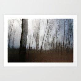 Movement in Nature IV Art Print