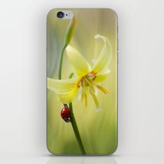 Lily lady iPhone & iPod Skin