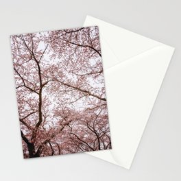 Photo of spring cherry blossom flowers in Almere, Japanese Sakura trees in the Netherlands | Fine Art Colorful Travel Photography | Stationery Cards