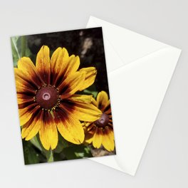 Really Radiant Rudbeckia Stationery Cards