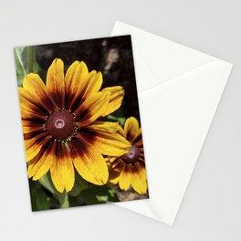 Really Radiant Rudbeckia Stationery Cards
