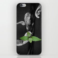 After falling through the Cracks iPhone & iPod Skin