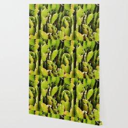 Green Cacti Wallpaper