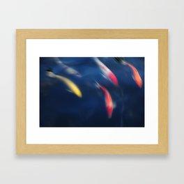 Koi fish in a pond Framed Art Print