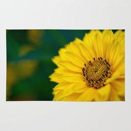 Yellow Daisy - Flower Photography Rug