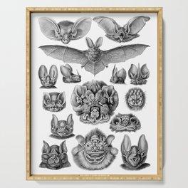 Ernst Haeckel Bats Serving Tray