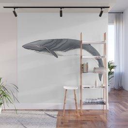 Fin whale Wall Mural