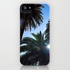 Ray of Sun through Palm Trees Slim Case iPhone (5, 5s)