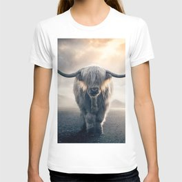 highland cattle scotland T-shirt