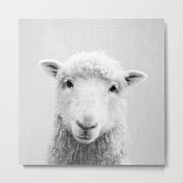 Sheep - Black & White Metal Print