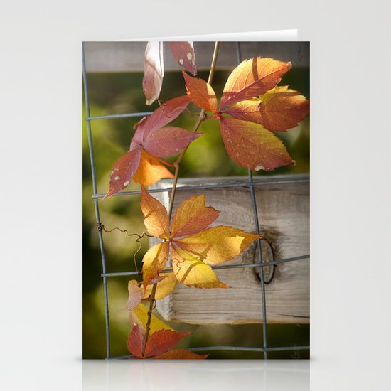 Holding on to the Warmth Stationery Cards