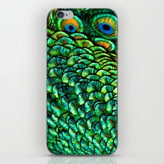 Fan Feathers iPhone & iPod Skin