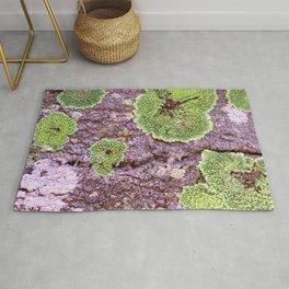 Tree Bark Pattern with Lichen #7 Rug