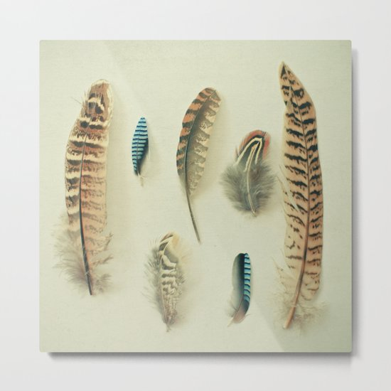 The Feather Collection Metal Print