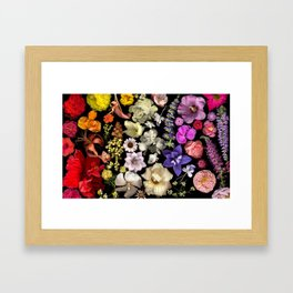 Floral Rainbow Framed Art Print