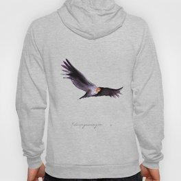 Condor Hoody