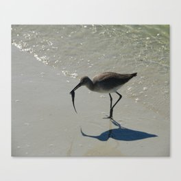 Lunch  At The Beach Canvas Print