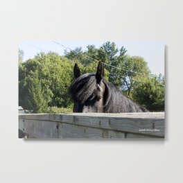 Look me in the eyes Metal Print