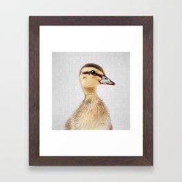 Duckling - Colorful Framed Art Print