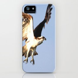 Watercolor Bird, Osprey 03, Janes Island, Maryland iPhone Case