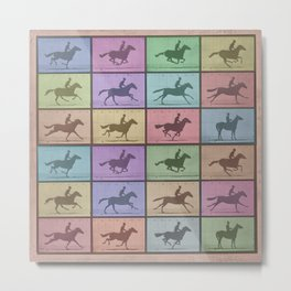 Time Lapse Motion Study Horse Color Metal Print